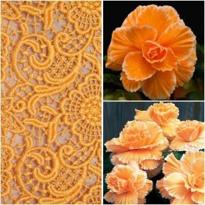 MUGULBEGOONIA Picotee Lace Orange