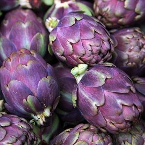 ARTIŠOK Violet de Provence