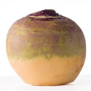 KAALIKAS 'Saba'