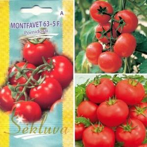 TOMAT 'Montfavet 63-5' F1