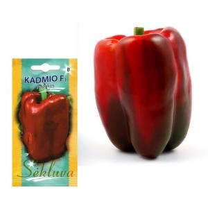 PAPRIKA 'Kadmio' F1