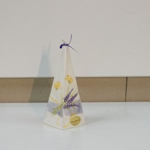 Küünal liblikas