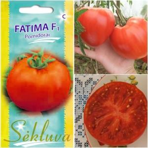 TOMAT 'Fatima' F1