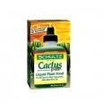 Schultz VEDELVÄETIS kaktustele