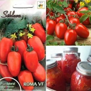 TOMAT 'Roma VF'